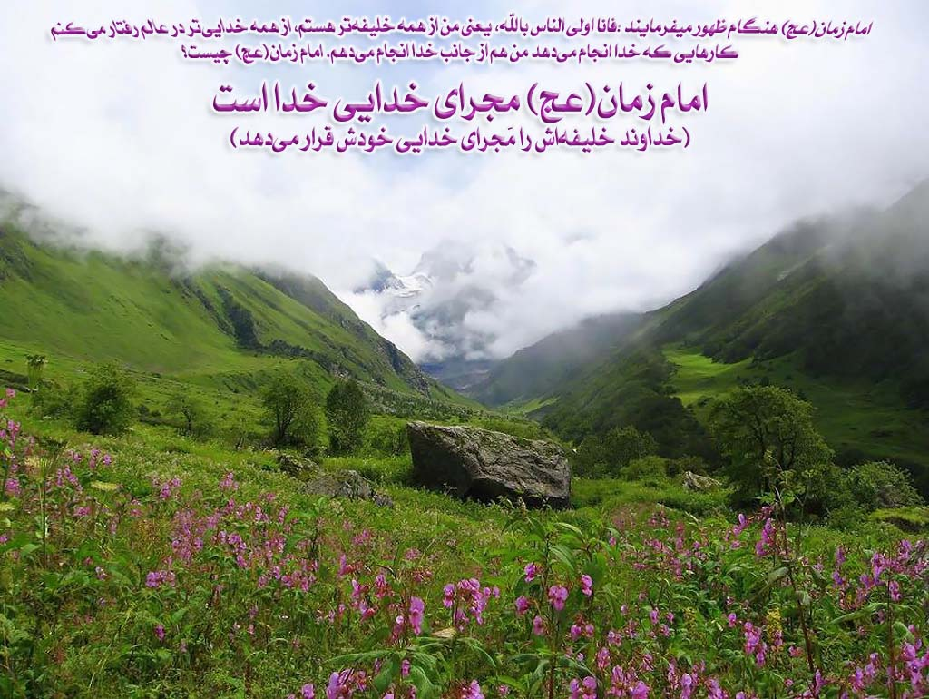 Долина цветов картинки 7